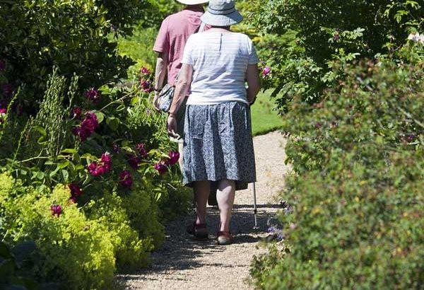bastoni da passeggio per anziani e disabili